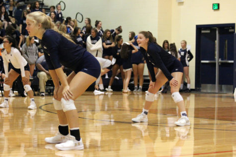 Volleyball suffers tough loss to Hornets