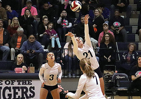 Volleyball headed to first round of playoffs