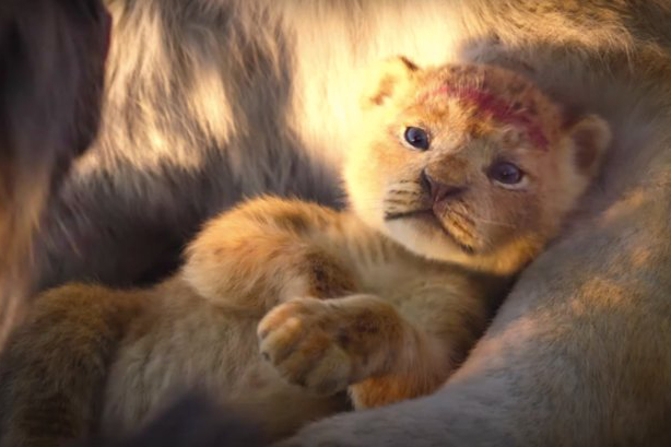 %22The+Lion+King%2C%22+directed+by+John+Favaru+is+set+to+come+out+on+July+19.