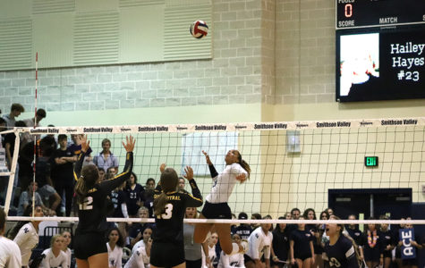 Volleyball hosts Knights for fair day matchup