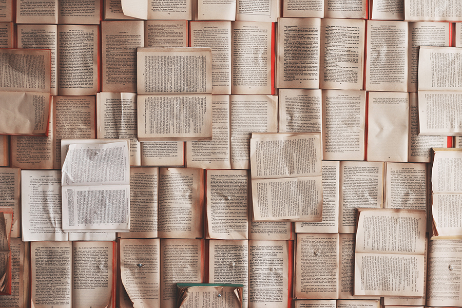 Of all the books in the sea, here are some choices that you will not forget.