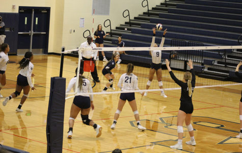 Volleyball Stuns Steele