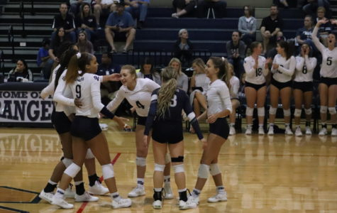 Volleyball's Playoff Push