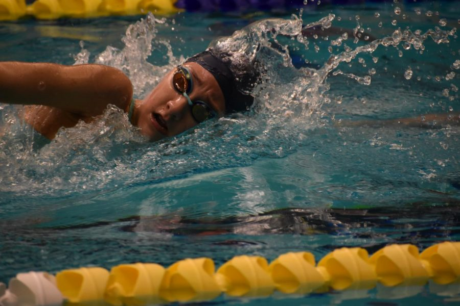 Cara Doyle swims in regional competition.