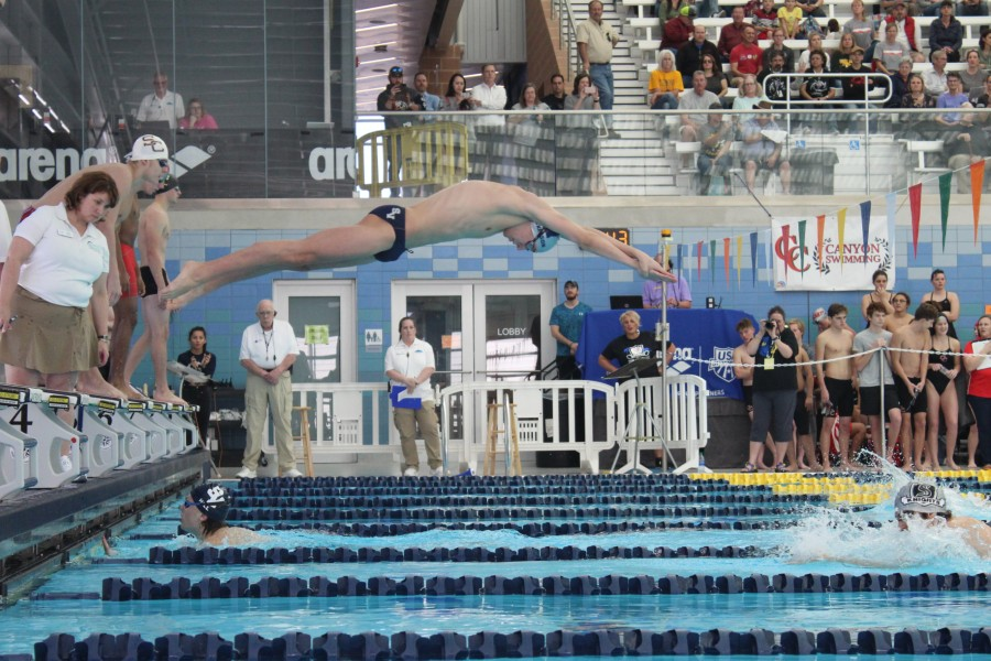 Chris+Mickelson+dives+in+during+the+district+meet+last+year.