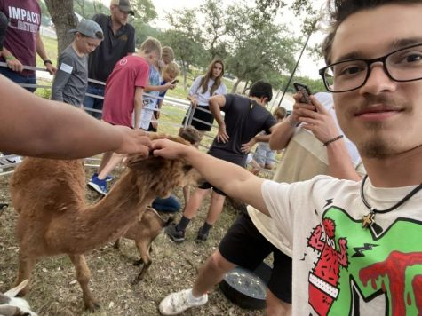 Senior Jackson Posey pets an alpaca at a local petting zoo exhibition. Posey promised to shave his controversial mustache upon raising $1,000 for hurricane relief.